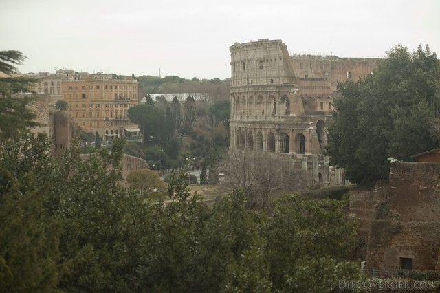 View of the Colosseum from the Palatine hill