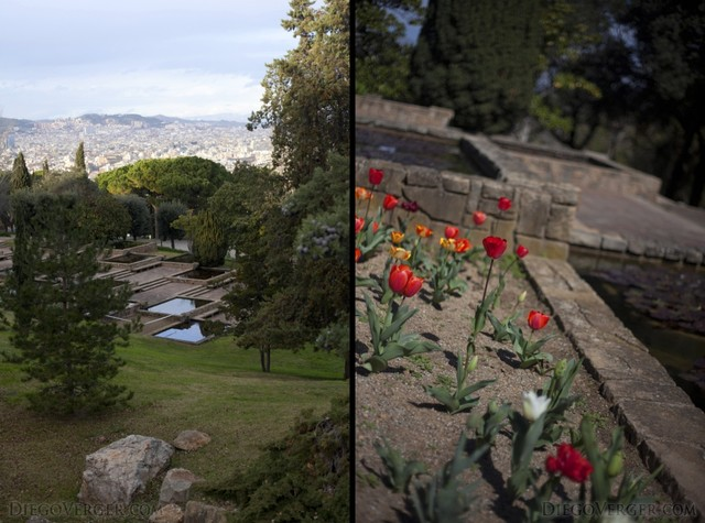 Mossèn Cinto Verdaguer garden flowers Barcelona
