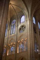 Triforium and sexpartite vault - Paris, France