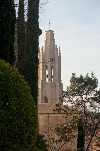 Bell tower of the Sant Feliu basilica between trees - Girona, Spain