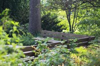Benches immersed in nature in summer - Lisle, United States