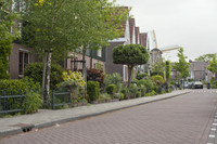 Home gardens and the Vriendschap windmill - Weesp, Netherlands