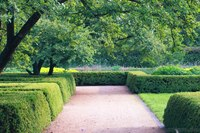 The Hedge Garden - Lisle, United States