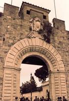 Porta Nuova in infrared - Pisa, Italy