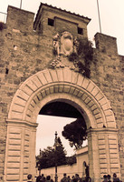 Porta Nuova ad infrarossi - Pisa, Italia