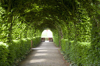 Covered path of vegetable arches between the Muiderslot gardens - Muiden, Netherlands