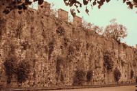 Le mura medievale dell'antica Repubblica di Pisa - Versione infrarossi - Pisa, Italia