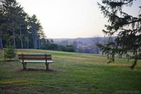 Paesaggio del Arboreto di Morton in autunno - Lisse, Stati Uniti