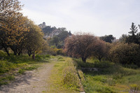 Path in the Ancient Agora - Athens, Greece