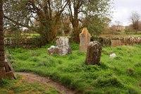 Hore Abbey Cemetery - Cashel, Ireland