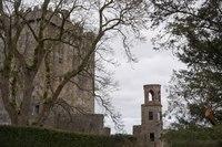 Blarney Castle Watch Tower - Blarney, Ireland