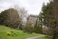 South Wall of Blarney Castle - Blarney, Ireland