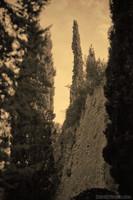 Mura di Girona incorniciata da alberi - Girona, Spagna