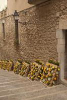 Pujada de la Catedral en Temps de Flors - Girona, España