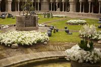 Patio de la catedral de Girona en Temps de Flors - Girona, España