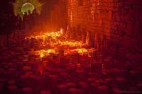 Exposición artística de luces y flores en el sótano de la catedral de Girona - Girona, España