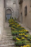 Escaleras de la puerta norte de la basílica de Sant Feliu durante Temps de Flors - Girona, España