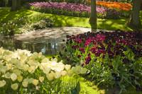 Estanque bordeado de macizos de flores junto al pabellón de la Reina Juliana - Lisse, Países Bajos