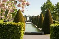 Flores de cerezo, estanques y árboles ornamentales en el área del Oranje Nassau - Lisse, Países Bajos