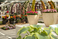 Floral arcades and flower pots in the Willem-Alexander pavilion - Lisse, Netherlands